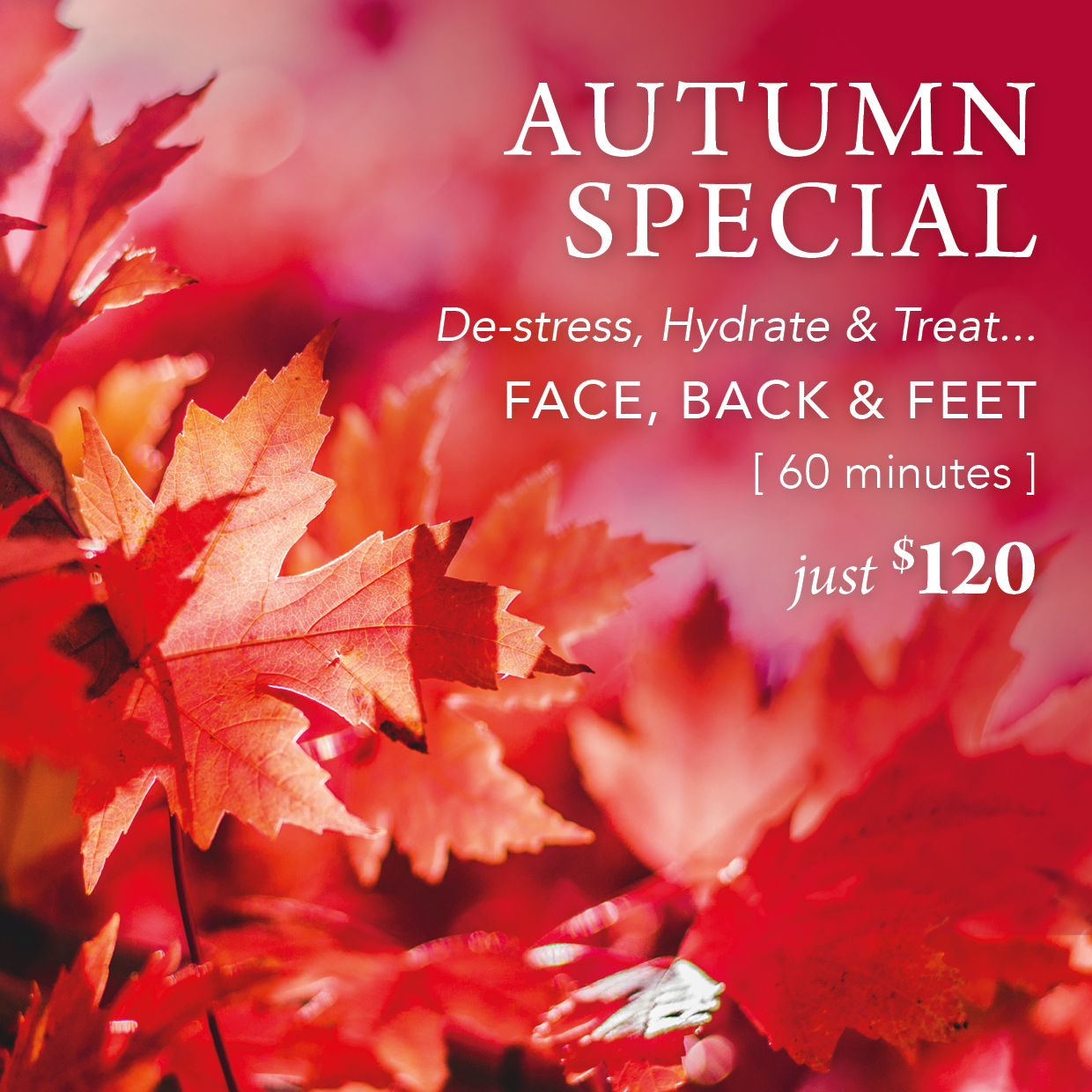 Autumn Special at Rouge Beauty Therapy
